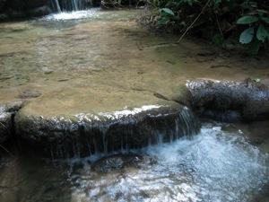 田んぼに使っている水の上流にある清流